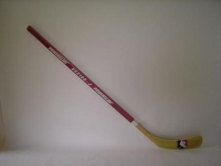 Final Hockey Stick GK 2100 Senior ca. 165cm rechts oder links